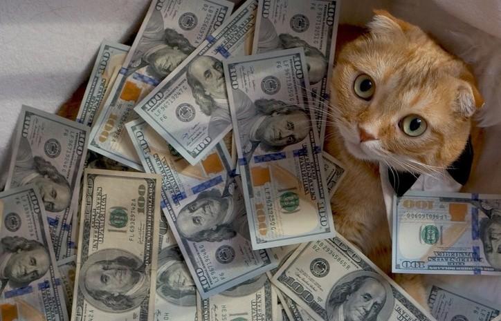 знаки зодиака повезет в деньгах