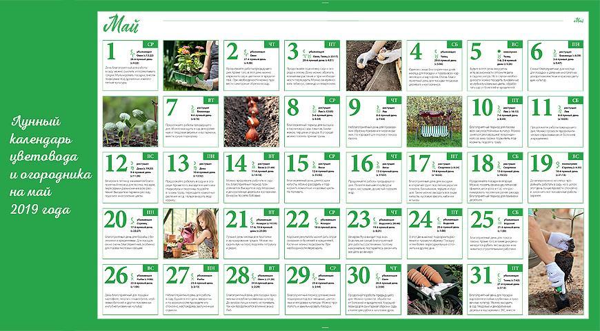 Лунный календарь огородника на май