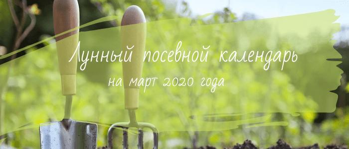 Лунный календарь садовода и огородника на март 2020