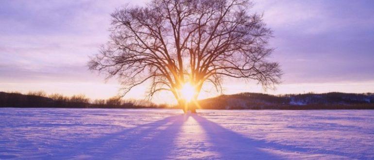 День зимнего солнцестояния в 2020