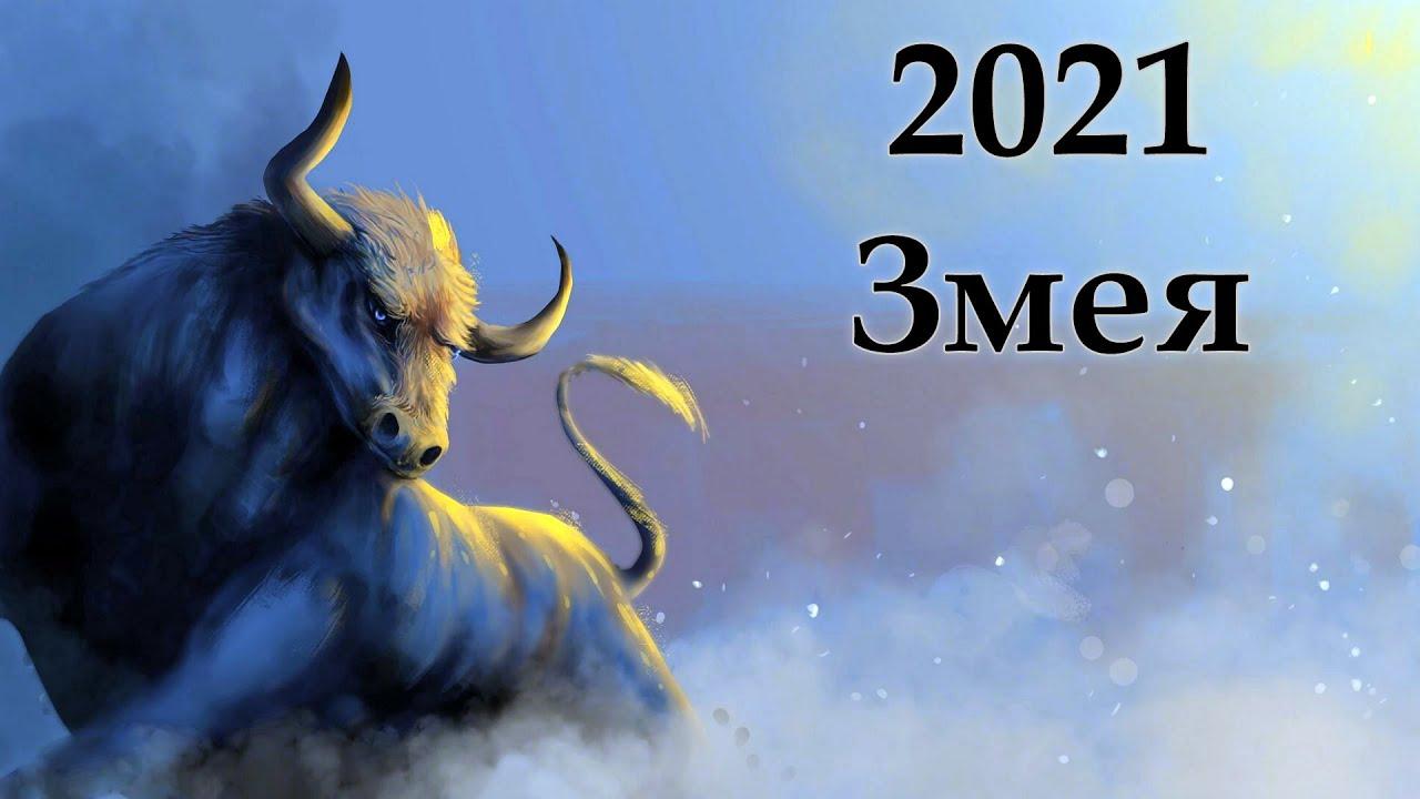 змея восточный гороскоп на 2021 год