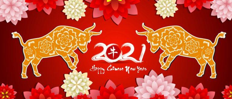 кабан восточный гороскоп 2021