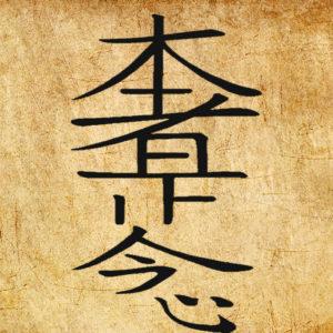 Символ рейка Хон Ша Зэ Шо Нен