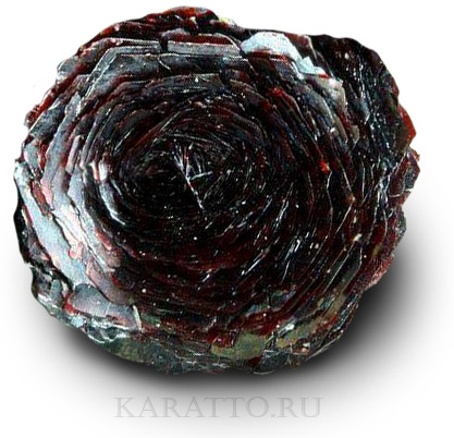 Железная роза