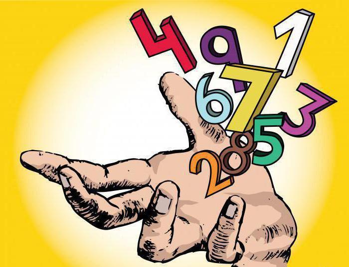 магия чисел дата рождения